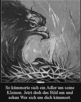 """Bild 0 für Bezirksjugend-Aktion: """"Wir bleiben verbunden"""" Beitrag AUF DEN ZWEITEN BLICK"""